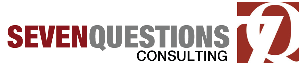 seven questions consulting